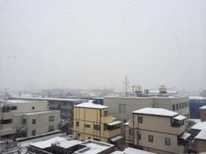 先日の雪!