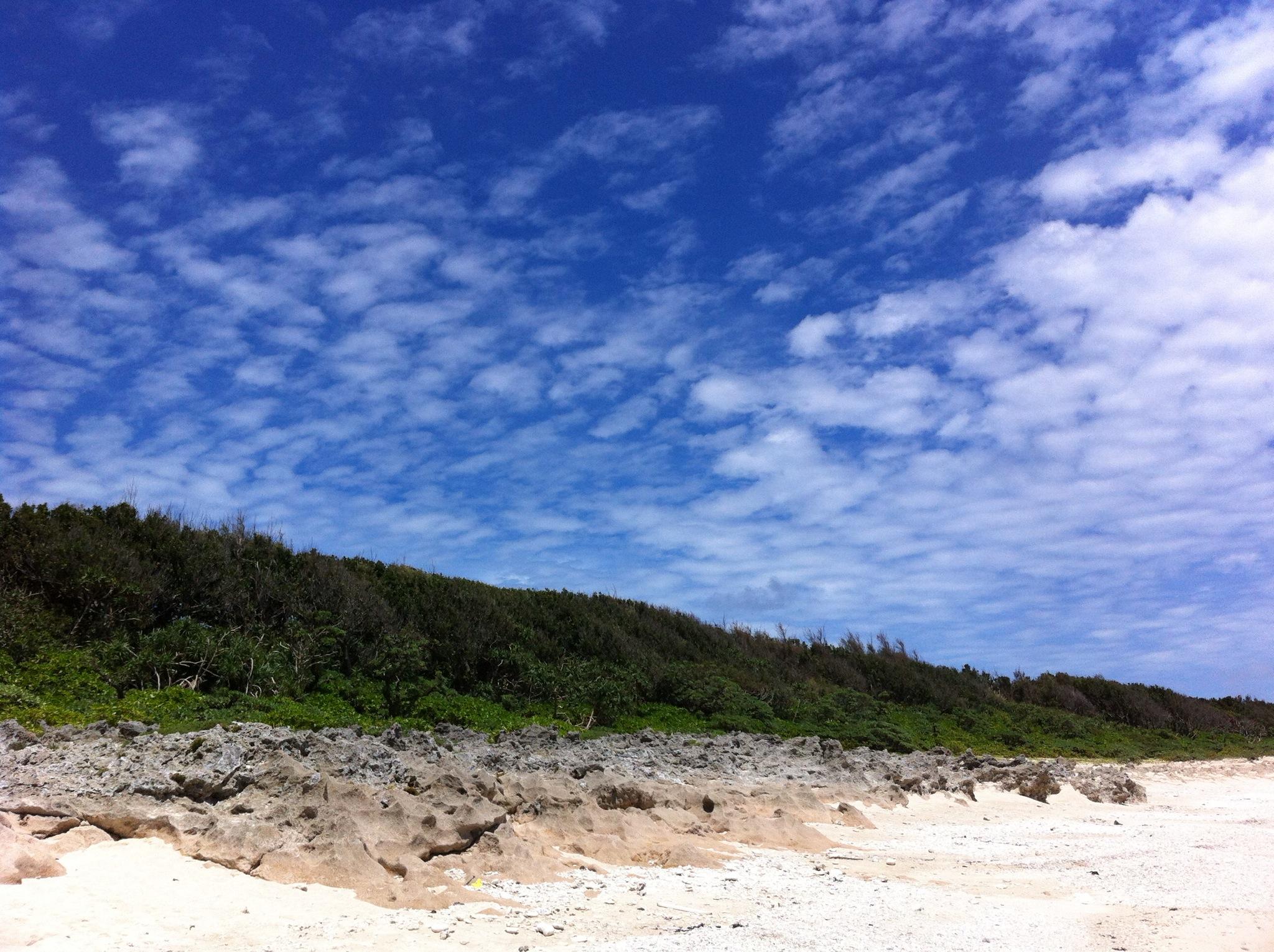 ほんとうに自然に囲まれた島で美しいです!!②