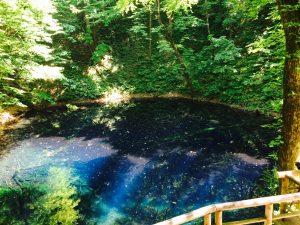 ものすごくきれいなブルーな池です!!!