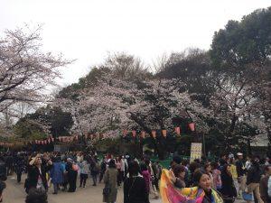 上野公園で花見①