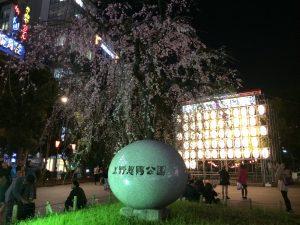 上野公園で花見③