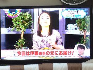 今日のジップで伊藤美誠選手が出演!明日も出るようです!