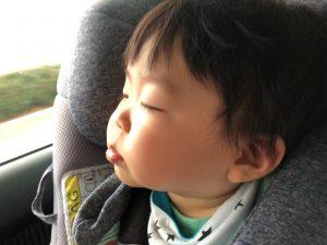 車は揺れが心地よい!爆睡!