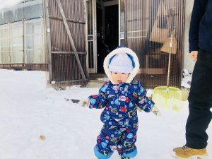 初めての雪遊び!あまり好きそうじゃなさそうでした!笑
