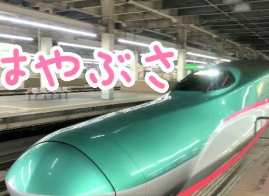 はやぶさ・新幹線・大宮駅