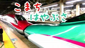 はやぶさ・こまち・新幹線・大宮駅