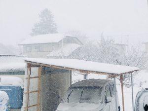 今日は雪が降って、寒いです!さすが雪国弘前!
